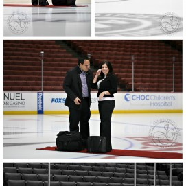 Honda Center engagment