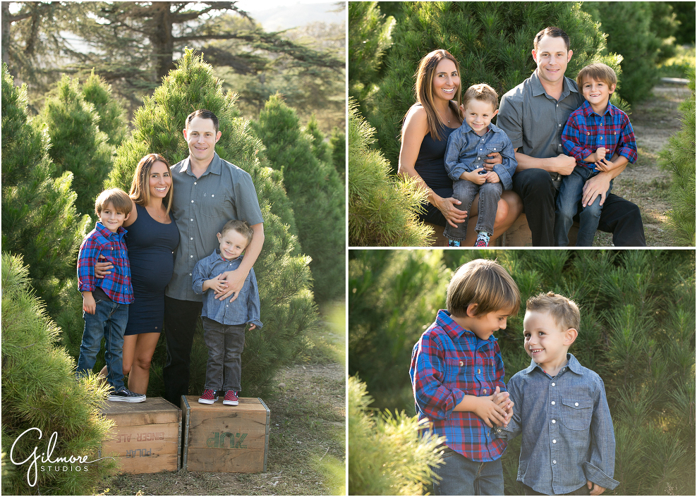 Christmas-tree-lot-family-photo-orange-county-photo-san-juan-capistrano-1