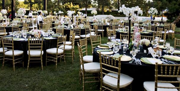 The Promenade And Gardens Bridal Show On January 30 Orange Turnip Rose