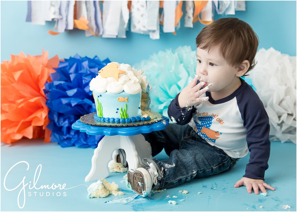 Dog Birthday Cake Orange County Ca