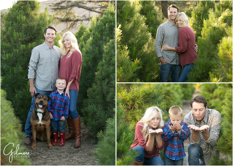 Holiday Family Portraits | Mini Sessions |Christmas Tree ...